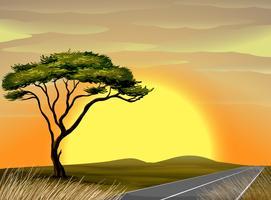 Scène de savane au coucher du soleil vecteur