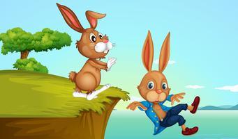 Bunny à la falaise vecteur
