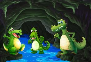 Trois crocodiles vivant dans la grotte
