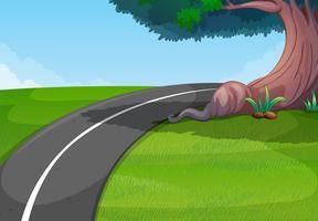 Route dans le parc vert