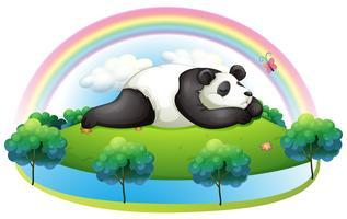 Une île avec un grand panda qui dort vecteur
