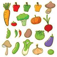 des légumes vecteur