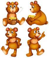 Quatre ours bruns vecteur