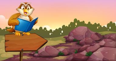 Un hibou lisant un livre au-dessus d'un panneau de flèche en bois vecteur