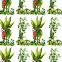Plantes sans soudure