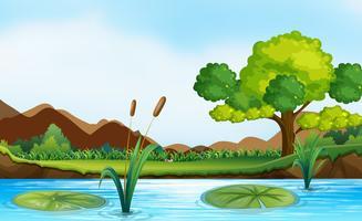 Scène avec rivière et parc vecteur