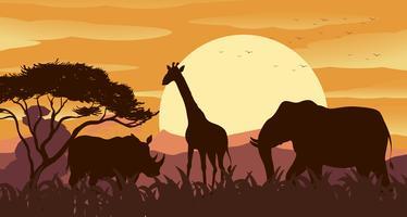 Scène de silhouette avec des animaux sauvages au coucher du soleil vecteur