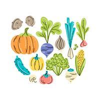 Illustration de légumes de vecteur