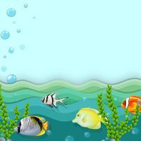 Une mer avec des poissons vecteur