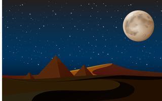 scène du désert avec des pyramides la nuit vecteur