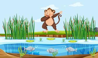 Un singe dans la nature vecteur