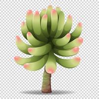 Fleur de cactus sur fond transparent vecteur