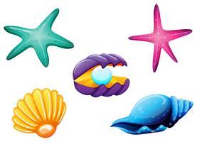 Créatures de la mer