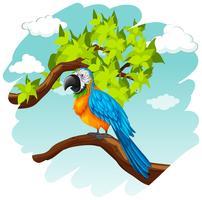 Perroquet, debout, sur, branche vecteur