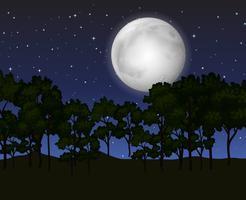 Scène avec la pleine lune la nuit