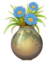 Un grand pot à fleurs bleues