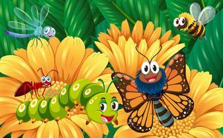 Insectes dans le jardin de fleurs vecteur