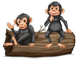 Chimpanzé vecteur