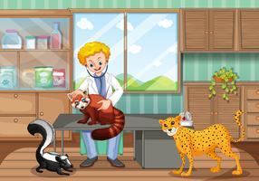 Vétérinaire soignant des animaux sauvages à la clinique vecteur