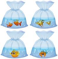 Différents types de poissons dans les sacs