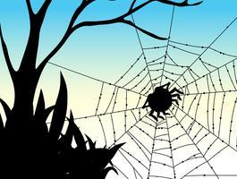 Silhouette araignée sur le web vecteur