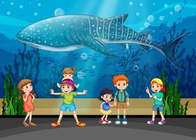 Enfants et épaulards en aquarium