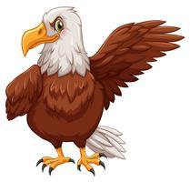 Aigle debout sur fond blanc vecteur