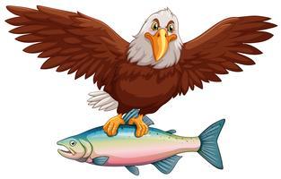 Aigle volant avec des poissons dans les griffes vecteur