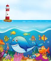 Animaux marins nageant sous l'océan