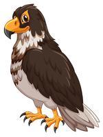 Aigle avec plume grise vecteur