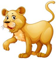 Petit lionceau