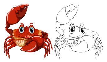 Contour des animaux pour le crabe vecteur
