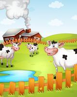 vaches paissant dans une ferme vecteur