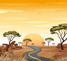Scène avec route vide au coucher du soleil