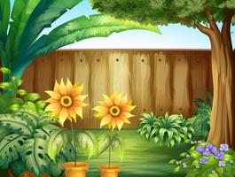 Scène avec des tournesols dans le jardin vecteur
