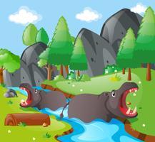 Hippopotame dans la rivière vecteur