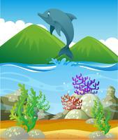 Dauphin sautant dans l'océan vecteur