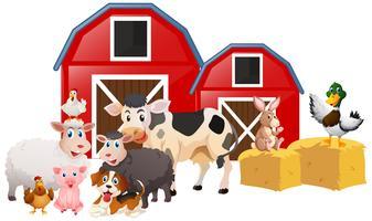 Animaux de la ferme dans la grange vecteur