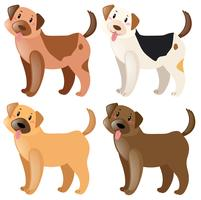 Quatre chiens de différentes couleurs de fourrure