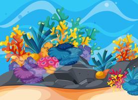 Scène de fond avec récif de corail sous l'eau