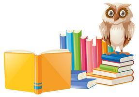Hibou brun et beaucoup de livres