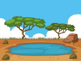Scène de fond avec étang dans le champ