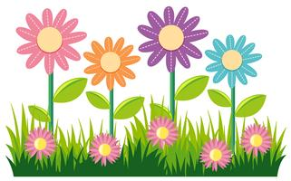 Conception de nature transparente avec des fleurs et de l'herbe