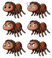 Araignée brune avec différentes émotions