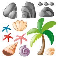 Ensemble de roches et coquillages vecteur