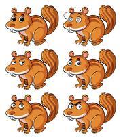 Écureuil brun avec différentes expressions faciales vecteur