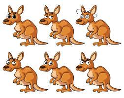 Kangourou avec différentes émotions vecteur
