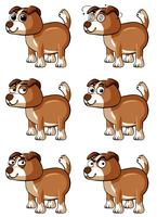 Chien brun avec différentes émotions faciales