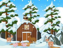 Beaucoup d'animaux dans le champ de neige