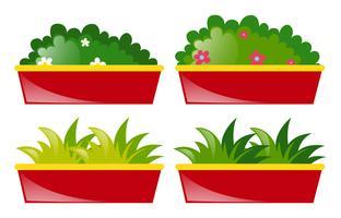 Quatre pot de fleurs et d'herbe